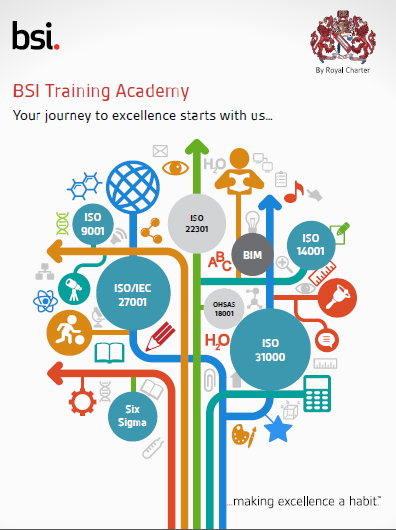 training courses bsi group south africa