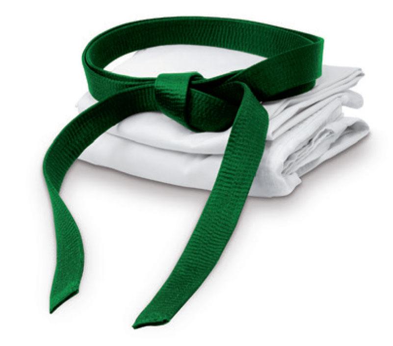 what is six sigma green belt pdf