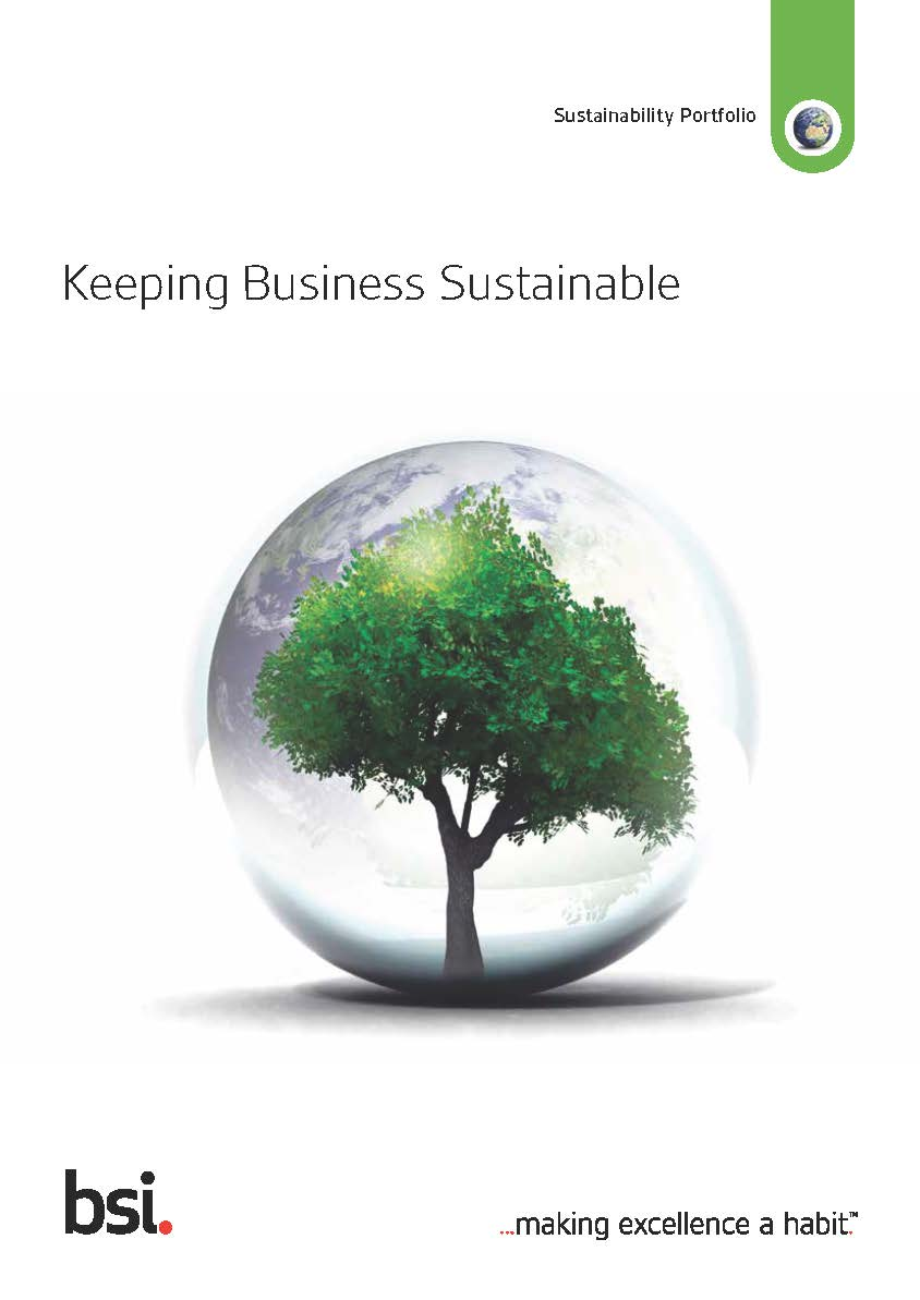Sustainability Sector Flyer