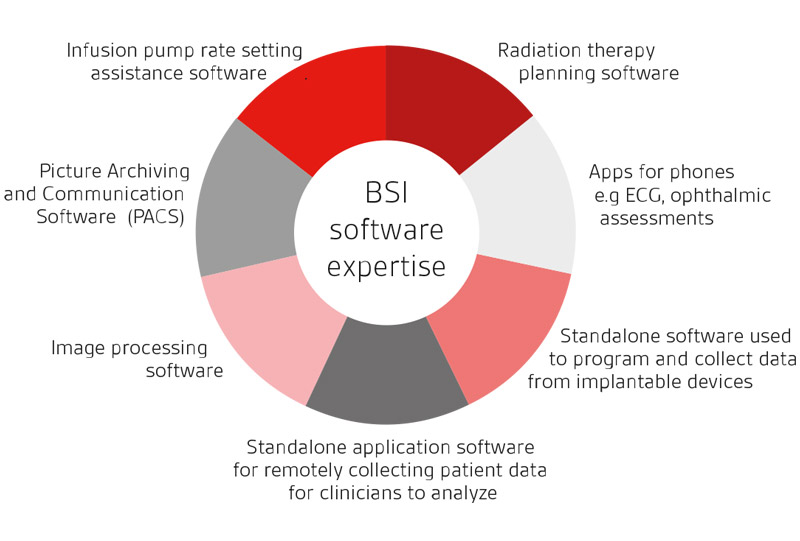 BSI Software expertise