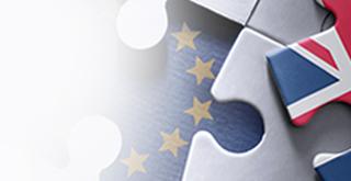 Brexit Webinar Eshot Banner