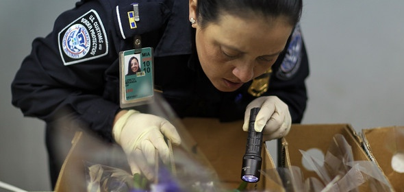 Customs officer searching for drugs in shipment (courtesy of CBP)