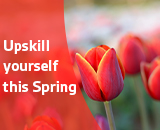 BSI Spring promo for training