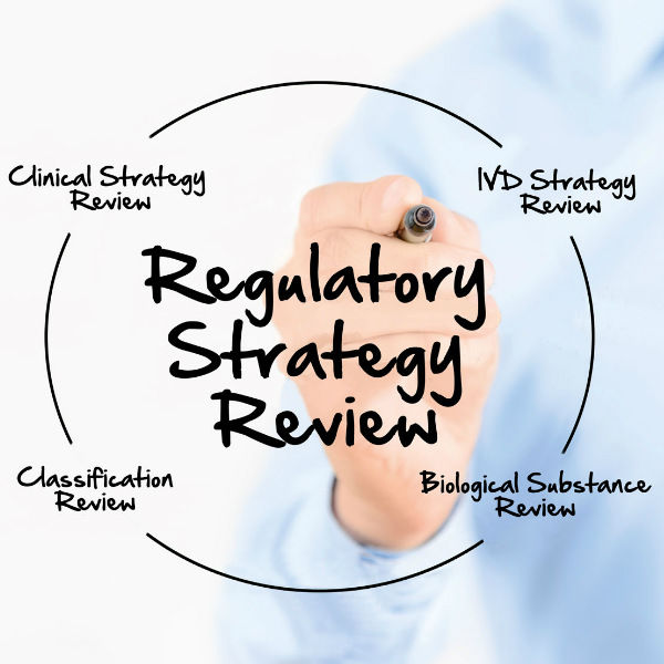 Regulatory strategy review medical devices BSI