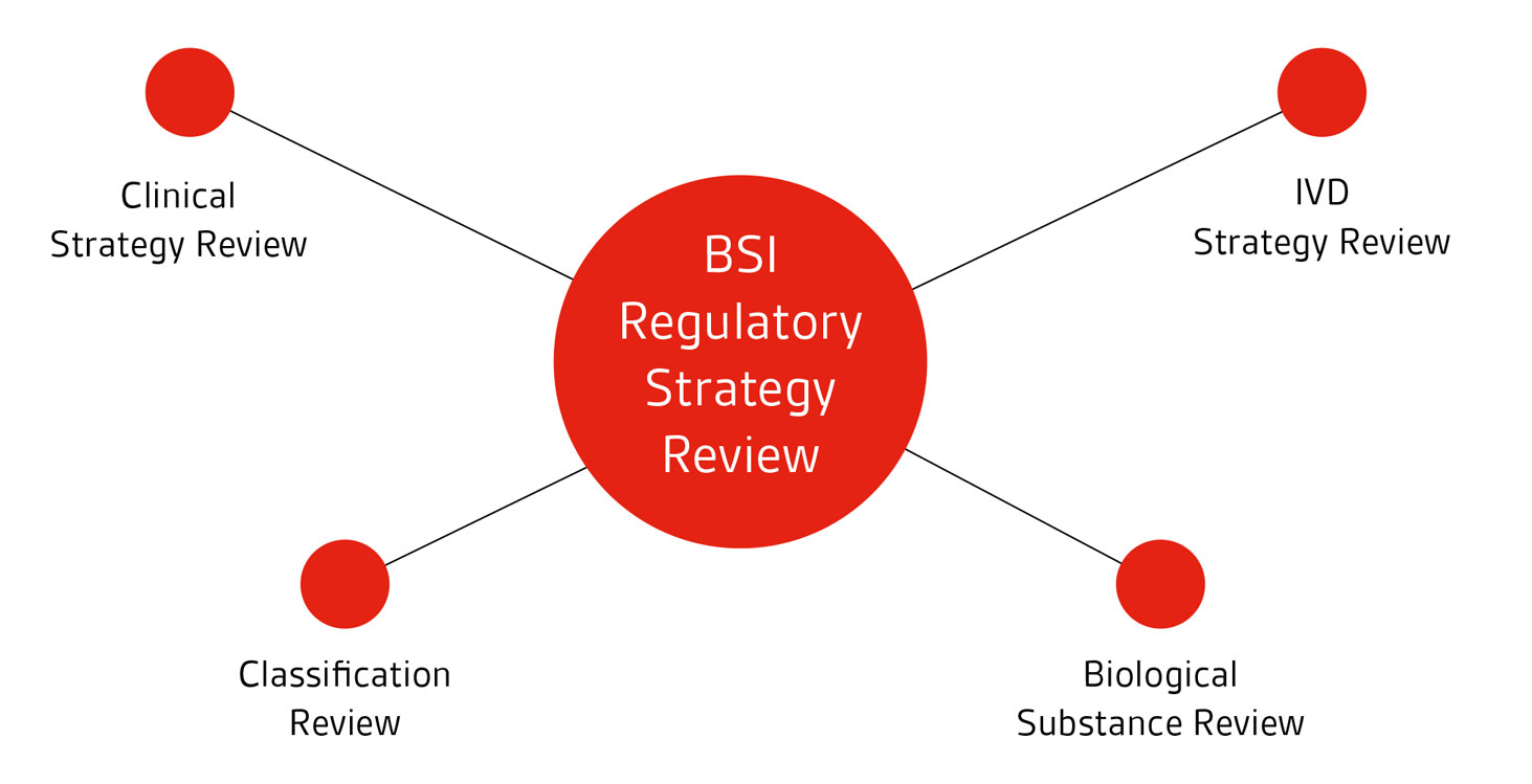 Regulatory-strategy-review