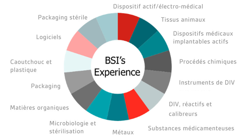 Iso13485 Management De La Qualité Dispositifs Médicaux Bsi Group