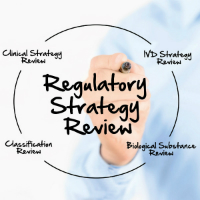 Regulatory Strategy Review